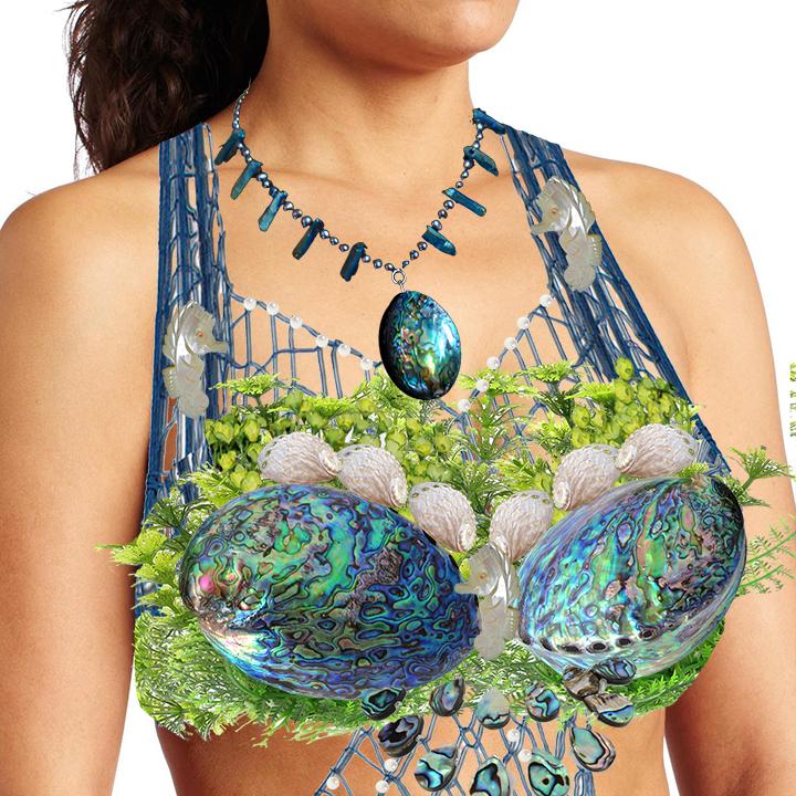 Name:  Mermaid Galene shell top plan.jpg Views: 3868 Size:  564.6 KB
