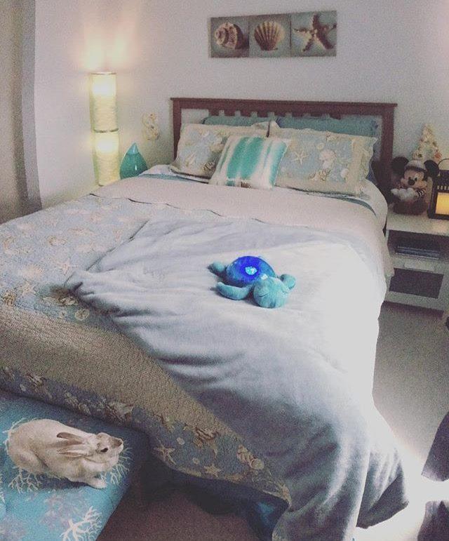 Name:  bedroom.jpg Views: 127 Size:  79.5 KB