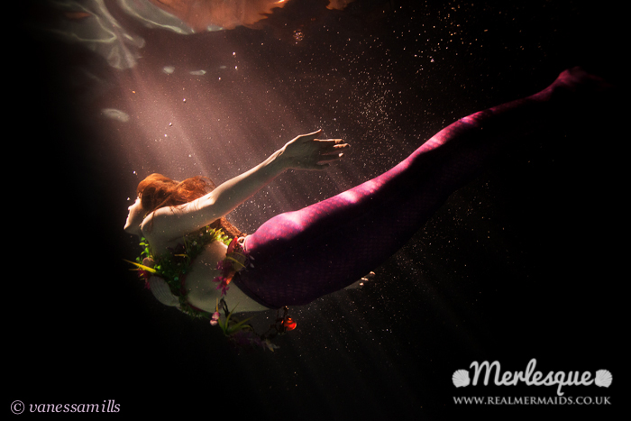 Name:  diving mermaid moonlight underwater reflection swimming merlesque.png Views: 136 Size:  307.2 KB