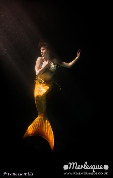 Name:  dramatic mermaid moonlight glow underwater merlesque.png Views: 120 Size:  193.3 KB