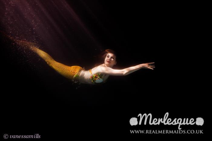 Name:  Light dark mermaid melusine moonlight dive underwater.png Views: 112 Size:  165.8 KB