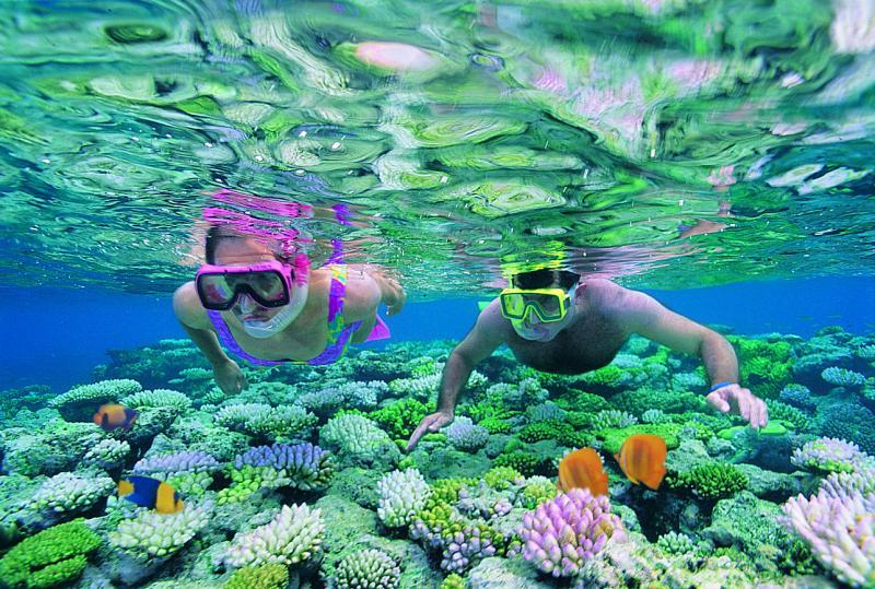 Name:  agincourt-reef-2443.jpg Views: 615 Size:  120.9 KB