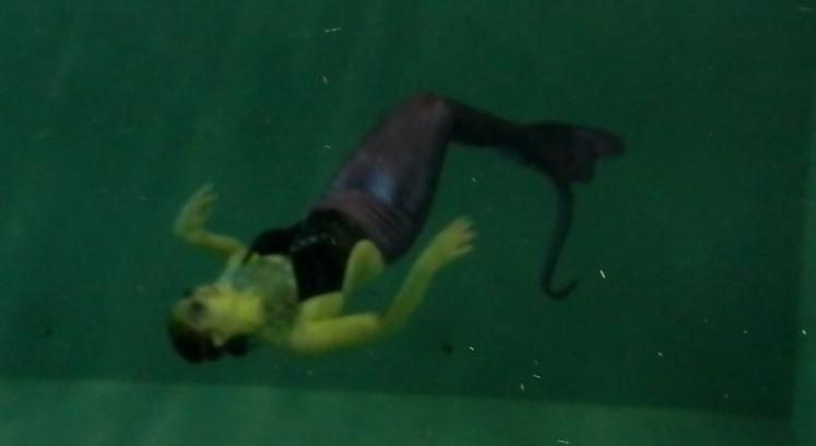 Name:  Capture mermaid.PNG Views: 1153 Size:  488.1 KB