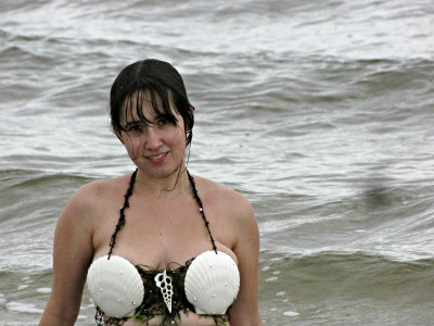 Name:  seashell.jpg Views: 4132 Size:  46.3 KB