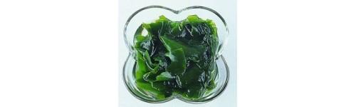 Name:  chungjungwon_seaweed.jpg Views: 468 Size:  12.3 KB