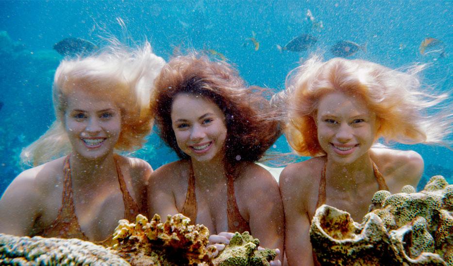 Name:  Mako_Mermaids_Underwater.jpg Views: 7755 Size:  165.4 KB