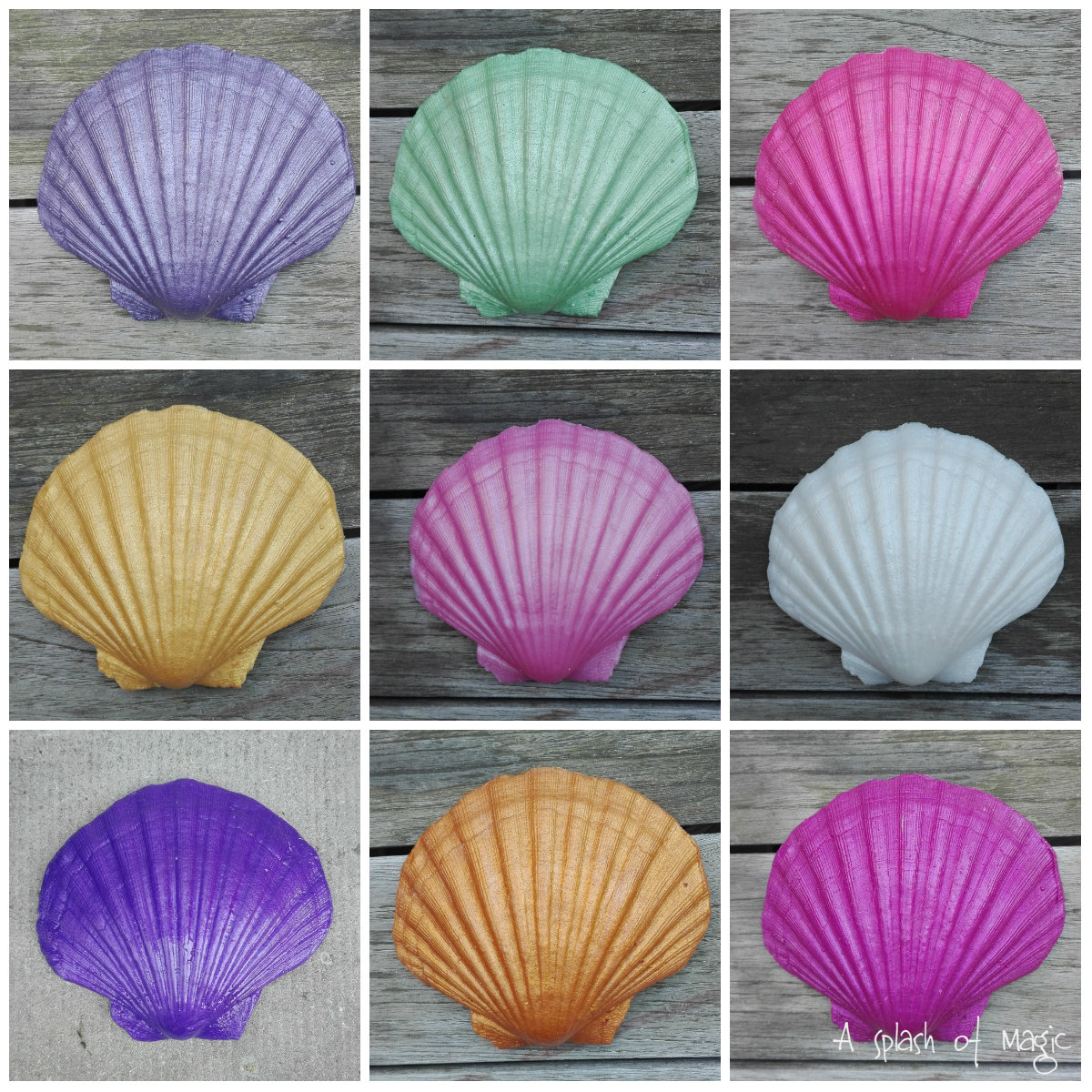 Name:  collage shells a splash of magic.jpg