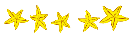 Name:  5starfish.jpg Views: 8060 Size:  56.8 KB