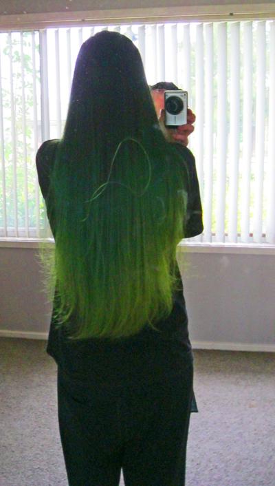 Name:  hair 0382.jpg Views: 713 Size:  266.4 KB