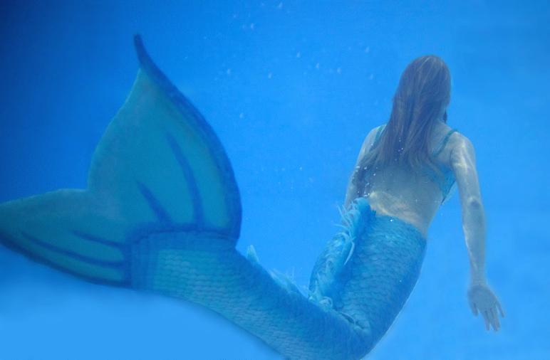 Name:  sirène bleue.jpg Views: 425 Size:  320.3 KB
