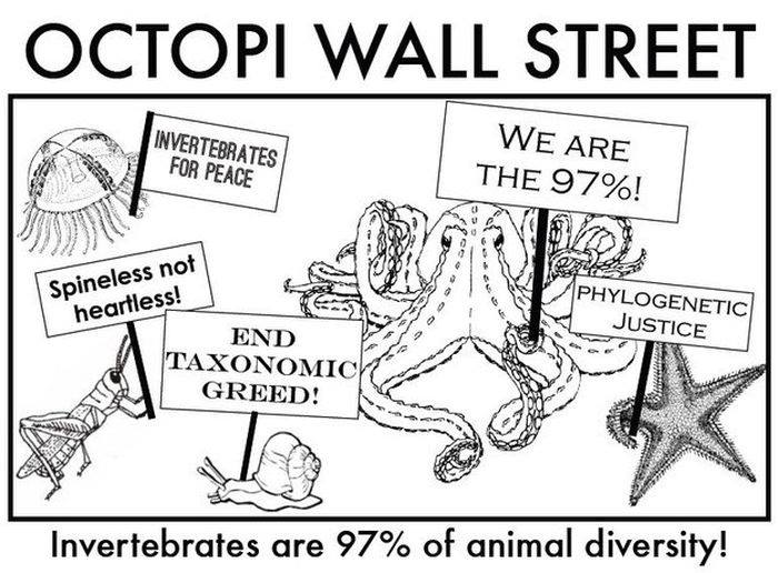 Name:  OctopiWallStreet.jpg