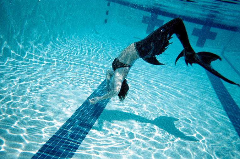 Name:  swimming6.jpg