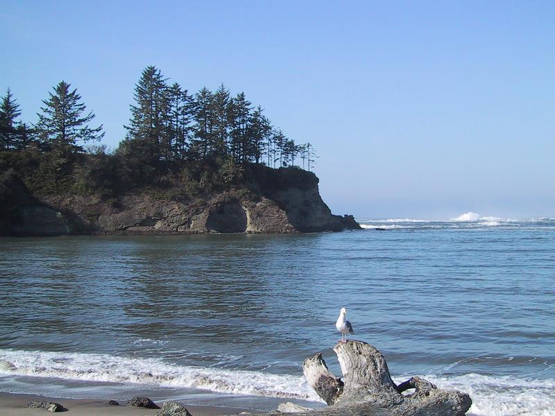 Name:  Sunset Bay.JPG Views: 1329 Size:  87.3 KB