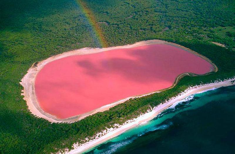 Name:  lake-hillier-pink-lake-in-australia-4.jpg Views: 608 Size:  92.9 KB
