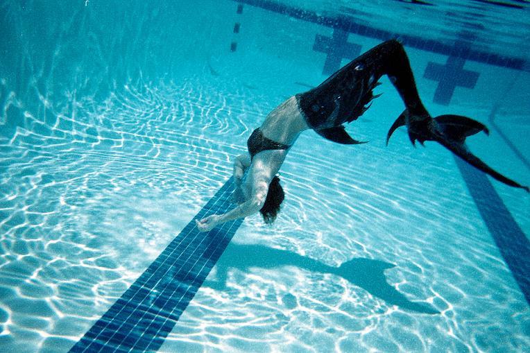 Name:  swimming6.jpg Views: 805 Size:  103.1 KB