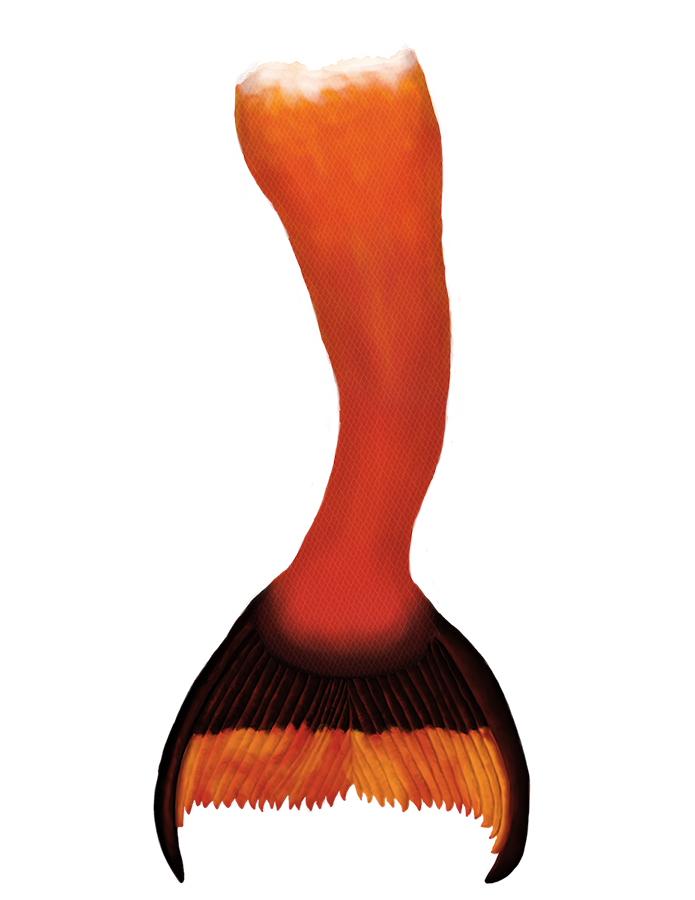 Name:  Raina's mermaid creation tail small.png Views: 297 Size:  341.5 KB