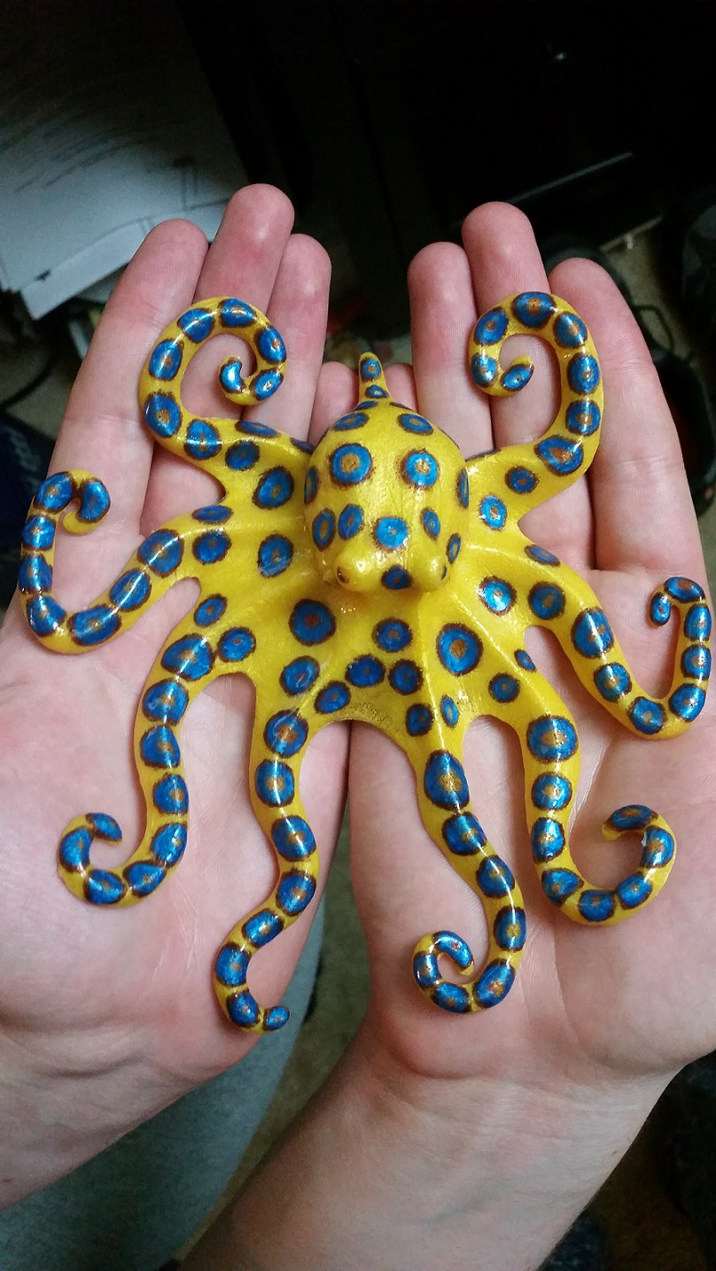 Name:  octotopus.jpg