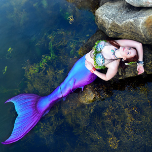 Winged Mermaid's Avatar