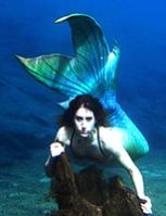 Mermaid Alea's Avatar